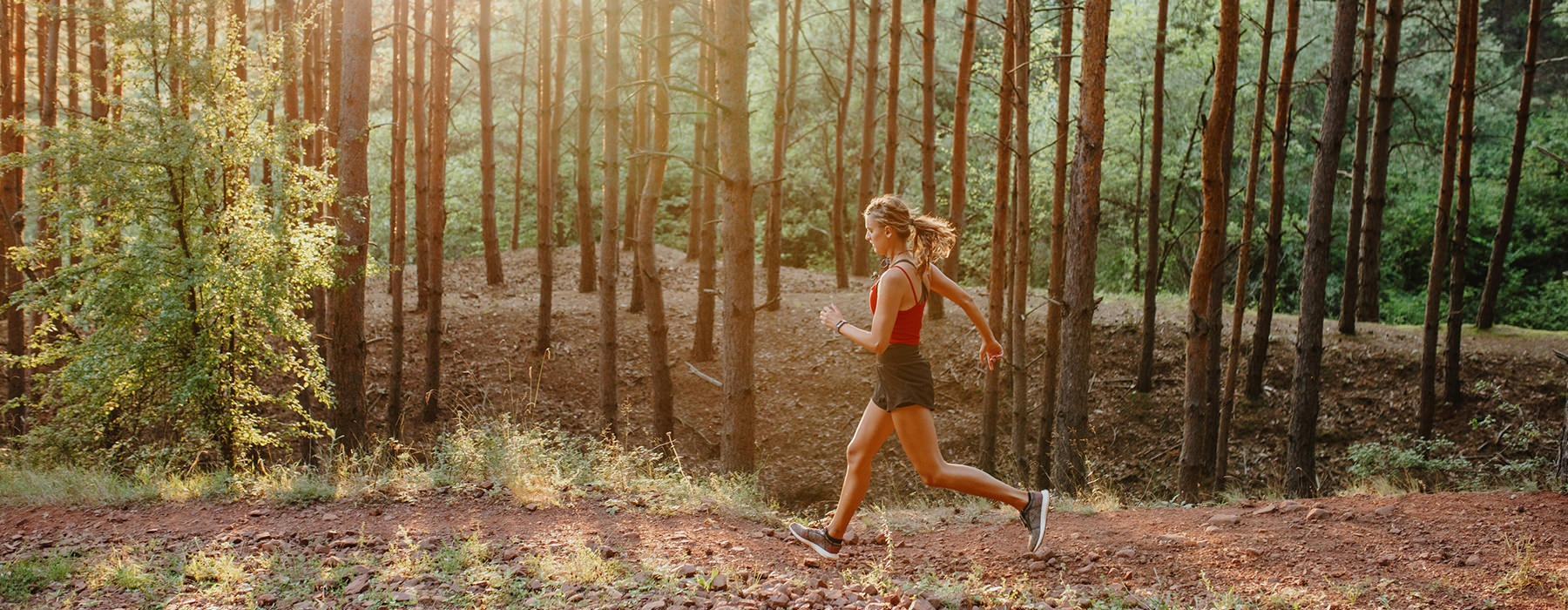 A woman jogging through the woods in the sunset.